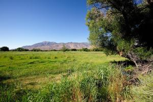 Bishop, California